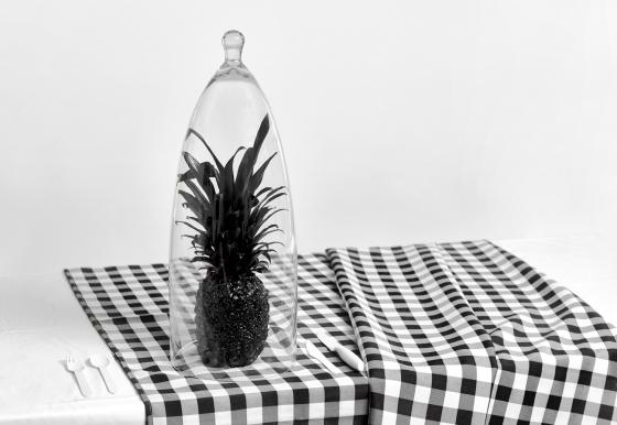Tru-Studio-Fruit-0892-WEB